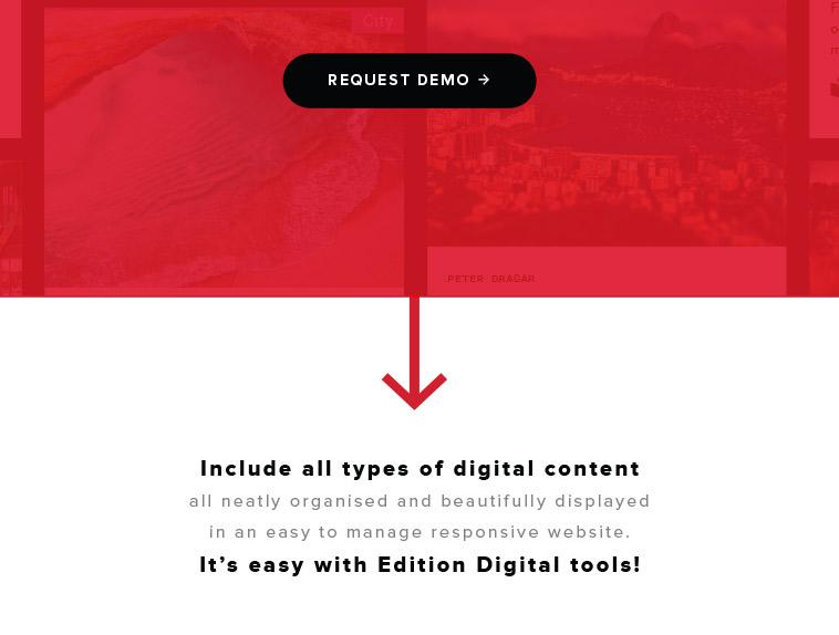 Edition Digital izdelava promocijske spletne strani za Content Hub Lepa reč